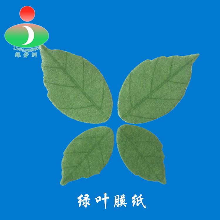 绿叶面膜纸